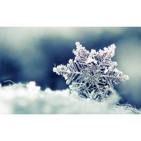 Téli termékeink